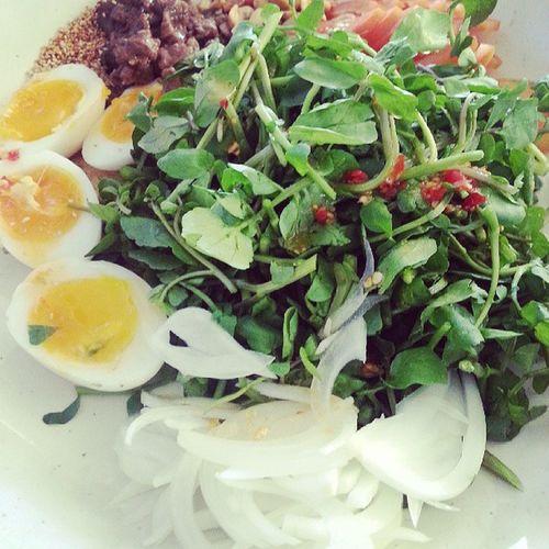 O_o Hochiminh Vietnam Saigon Foodforthebirds