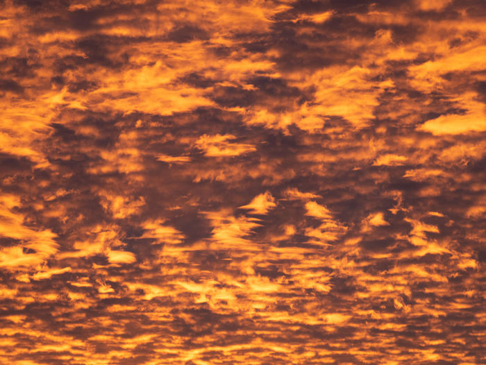 Sky Cloud - Sky Sunset Beauty In Nature Orange Color Scenics - Nature Backgrounds Tranquility Full Frame Nature Dramatic Sky No People Tranquil Scene Idyllic Cloudscape Outdoors Sunlight Low Angle View Environment Abstract Backgrounds Meteorology