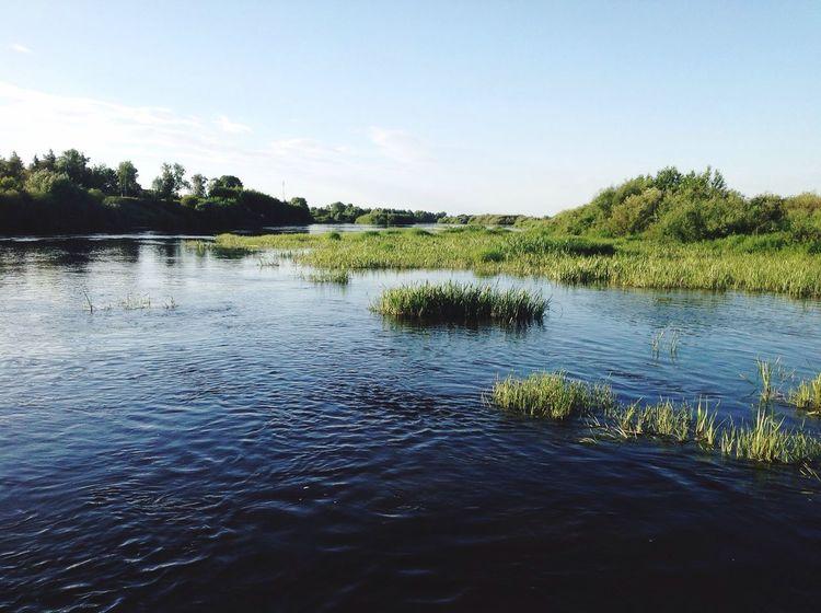 река River течение речка цна Природа природа и красота природароссии природа🍃 Nature Naturerussia