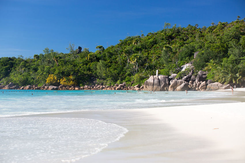 La Digue Anse Lazio Anse Source D'argent Beach Beauty Beauty In Nature Blue Landscape Mahé Nature No People Outdoors Palm Tree Praslin Seychelles Relaxation Sea Sky Tourism Tranquil Scene Tranquility Travel Destinations Tree Tropical Climate Vacations Water