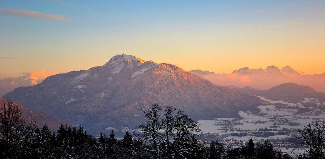 Mont Blanc-Môle-Bargy Haute-Savoie  Bonneville Mont Blanc Viuz En Sallaz Le Môle Tree Pinaceae Mountain Pine Tree Forest Snow Winter