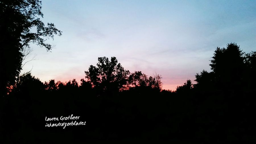Backyardphotography Mybackyard Nature Photography Gorgeous View Naturesfinest Naturelovers Nature_collection Pretty Silhouettes Sunset Trees Naturephotography Theplacebeyondthepines