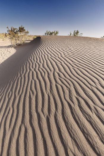 Sand dune at desert against clear sky