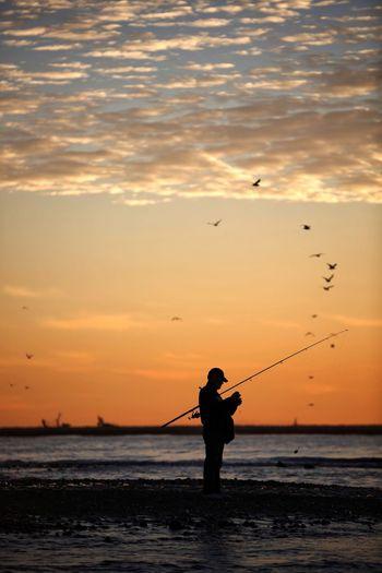 Fisherman Sunset Sky Sea Beach Water Beauty In Nature Land Vertebrate Cloud - Sky Orange Color Silhouette Bird Scenics - Nature Fishing Nature Men One Person Outdoors Horizon Over Water Fisherman