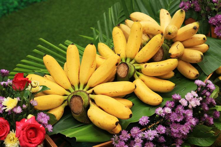 Golden banana or lady finger banana tropical fruit on banana leaf. Freshness Plant Banana Yellow Healthy Eating Close-up Fruit Agriculture Benefit Bunch Tasty Golden Banana Fruits Dessert Fruit Market Market Organic Nutrition Sweet Food Tropical Fruit Vitamin