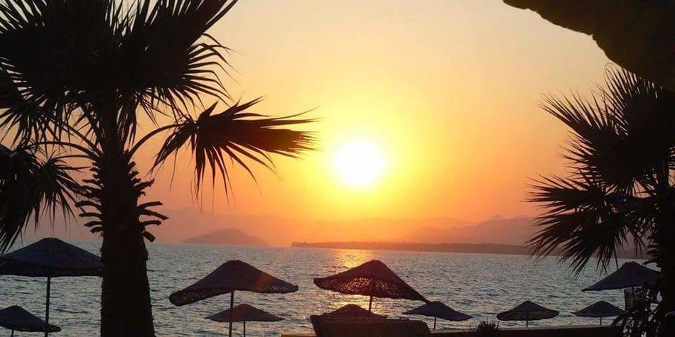 Sunset. Turkey. Water Sea Palm Tree Tree Sunset Beach Sand Sky Horizon Over Water The Great Outdoors - 2018 EyeEm Awards The Traveler - 2018 EyeEm Awards