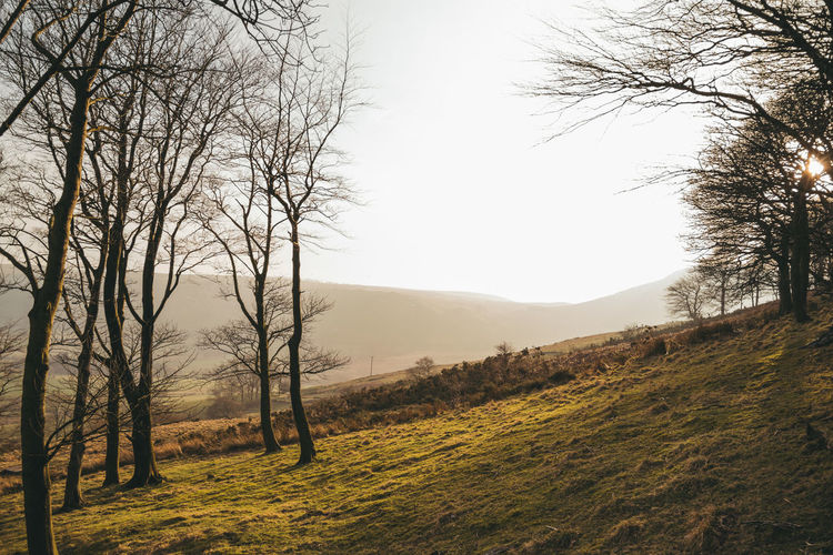Mamtor Landscape Scenery Tones Of Colour ShiningBRIGHT Burstofsunshine Bright Peak District  Nature Photography Landscape_Collection Colours Nikonphotography Outdoors Tones Peak District Northern England Landscape_photography Scenery_collection Nature Landscape_lovers Nature_collection Nikon Moody First Eyeem Photo Exploring Wandering