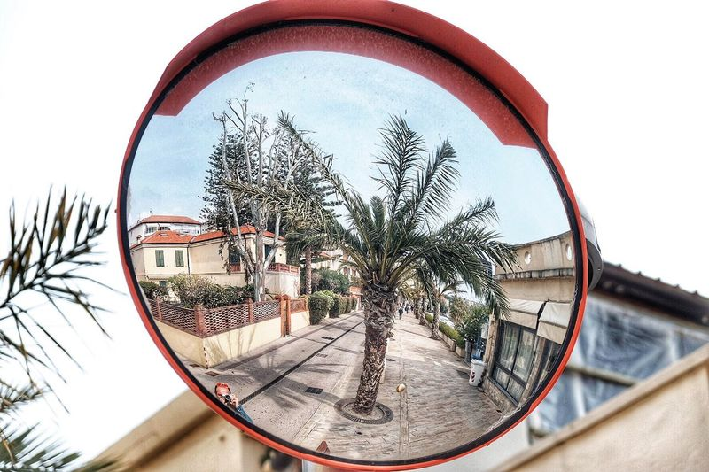 Here Belongs To Me Arma Di Taggia Liguria - Riviera Di Ponente Liguria Reflection Reflections Mirror That's Me Palm Trees Palm Tree Mediterranean  By The Sea Seaside Italy Sea EyeEm Best Shots