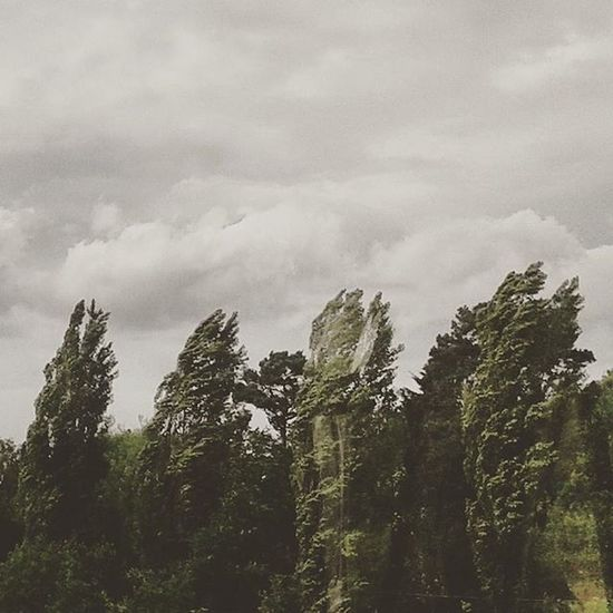 Memoria Memory Pasado Past tiempo time trees viento wind nubes clouds naturaleza nature paisaje landscape britain inglaterra kosmonomada