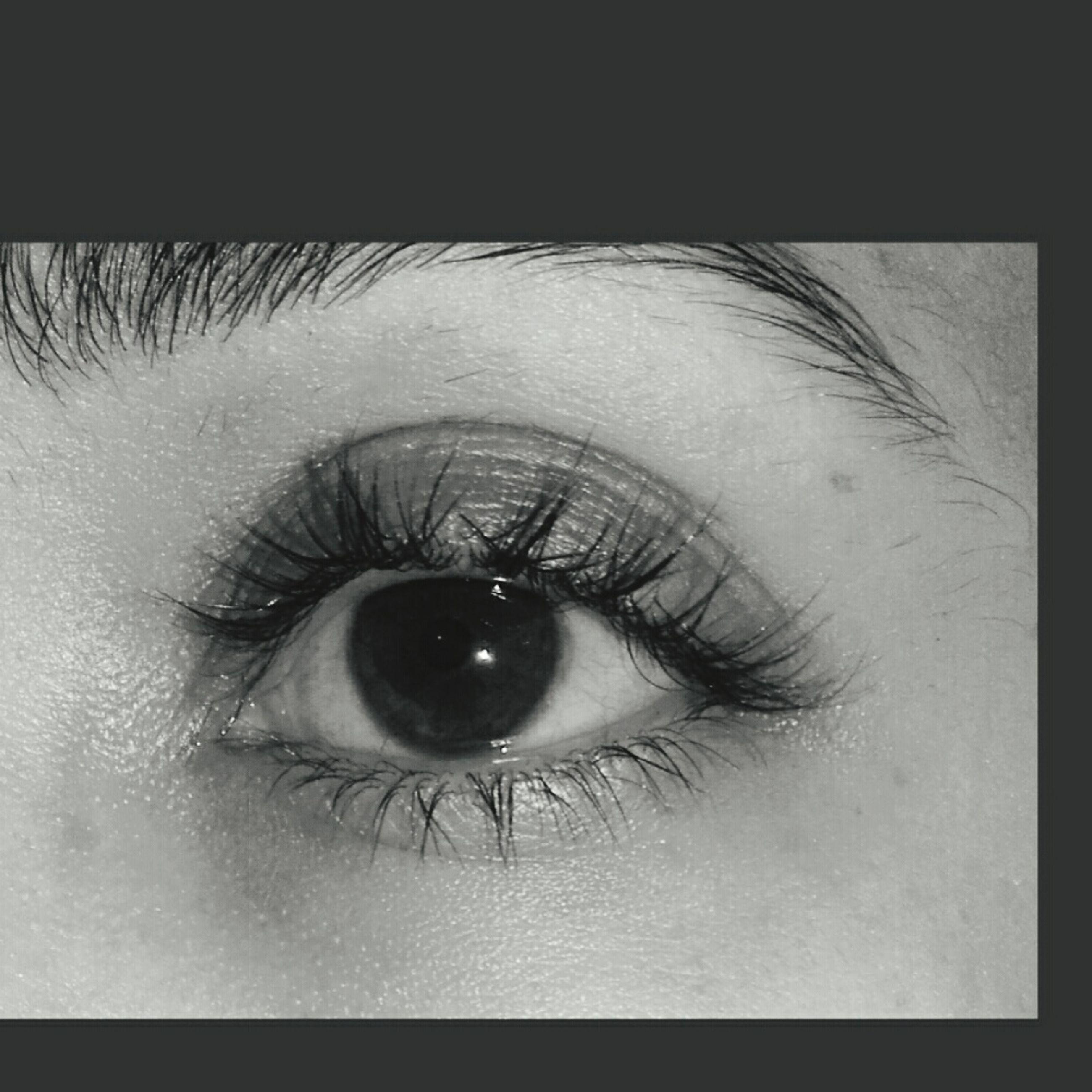 human eye, human body part, eyelash, close-up, sensory perception, macro, real people, eyesight, one person, eyeball, iris - eye, human skin, people, eyebrow, adult, outdoors, day