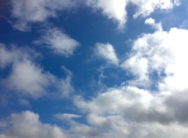 久しぶりに晴れた☀ 金曜日 頑張ろ~にゃ❤ Cloud - Sky Blue Sky Beauty In Nature Natural_love Smile Happiness 青空 笑顔 ハピハピ キミに届け 繋がるソラ