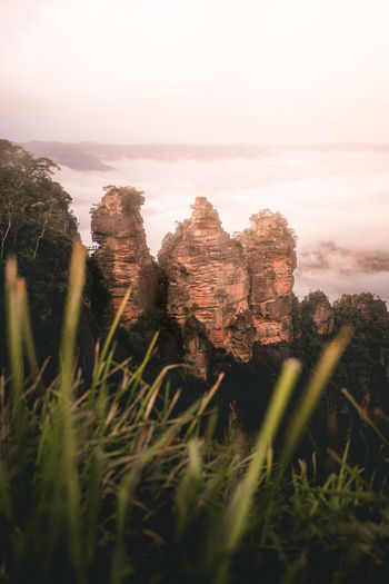 Three Sisters at the Blue Mountains Australian Landscape Blue Mountains Rock Formation Beauty In Nature Day Environment Grass Growth Land Nature No People Outdoors Plant Rock Rock - Object Scenics Scenics - Nature Sky Sydney Three Sisters Tranquil Scene Tranquility