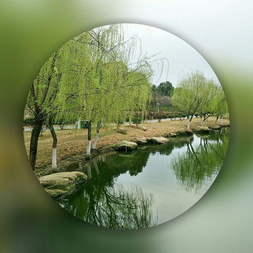 王家河大桥 风景区