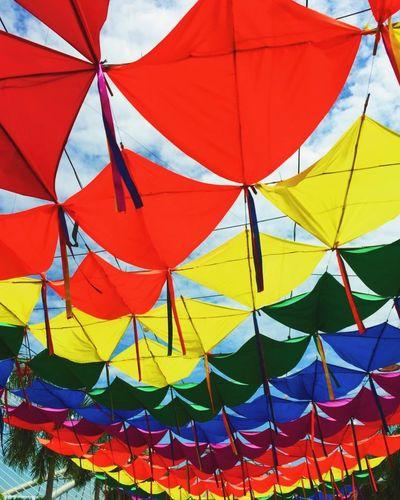 Randomshot Dailyphoto Exhibition Colourful Csfphotograph