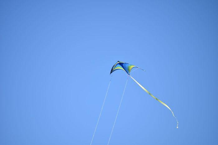 Freedom Aerobatics Flying Clear Sky Blue Motion Mid-air Stunt Sunny Gliding The Great Outdoors - 2018 EyeEm Awards