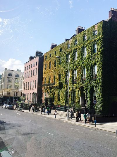 Dublin Dublin, Ireland Streetphotography People Streets Of Ireland Ireland🍀 Vines Old Buildings Colorful City On The Way