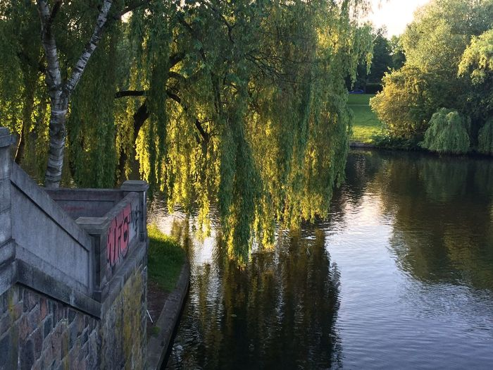 ☀️ Peaceful Place ☀ ️Taking Photos Nature Cityscapes Chilling Brabandkanal Riverside River View Riverbank Alster Alsterview