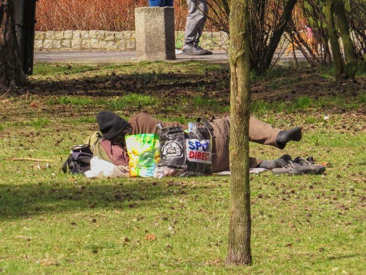 Homeless in the park Homeless Homelessness  Park