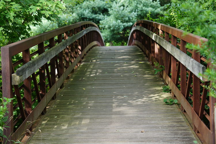 Wooden arched footbridge in summer