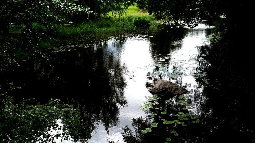 Nature Photography River Water Reflections Water Beautiful Nature Enjoy Life Hanging Out Taking Photos From My Point Of View