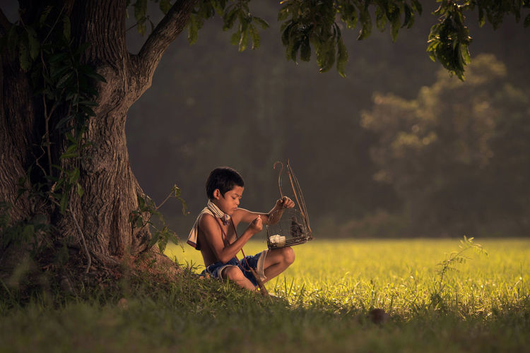 Boy holding birdcage by tree on field