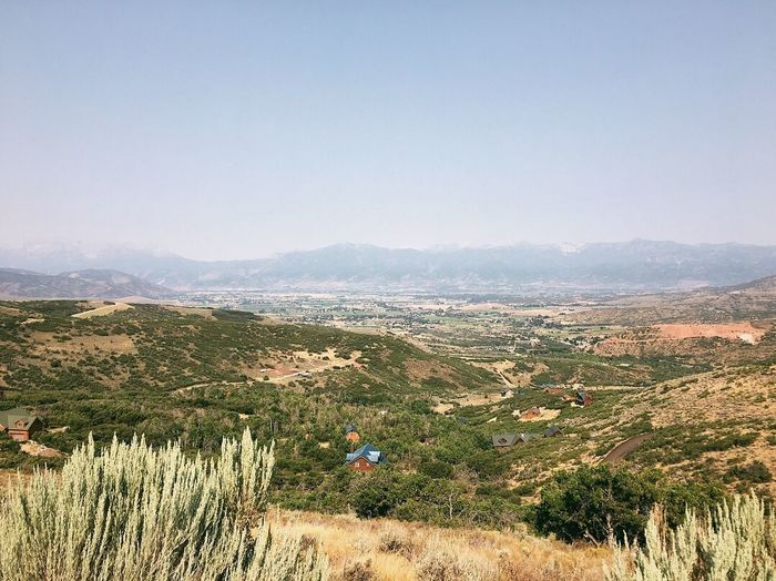 a.m. run before the wildfire smoke creeps in again. 7,500ft ☁️⛰☁️ Wasatch Mountains Heber City Utah Wasatch County Plant Mountain Landscape Sky Nature Scenics - Nature Field