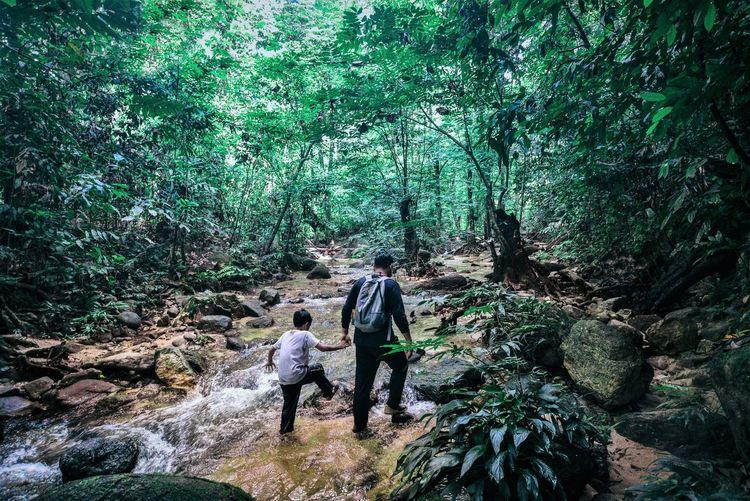 Rear view of friends walking in forest