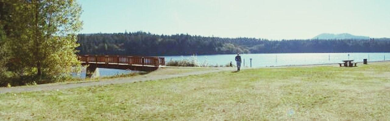 At Lewis Creek Lake Bridge Nature Walk Panoramic