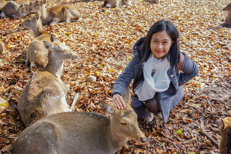 High Angle Portrait Of Woman Petting Deer At Zoo
