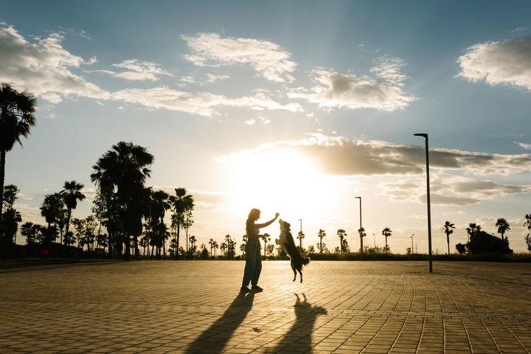 People walking on street at sunset