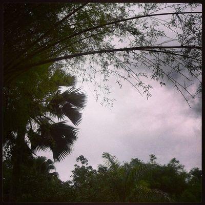 Instacrazy Sunmit Panamá DayFree air lovely instaphoto photo instamine nice great follwme & followback