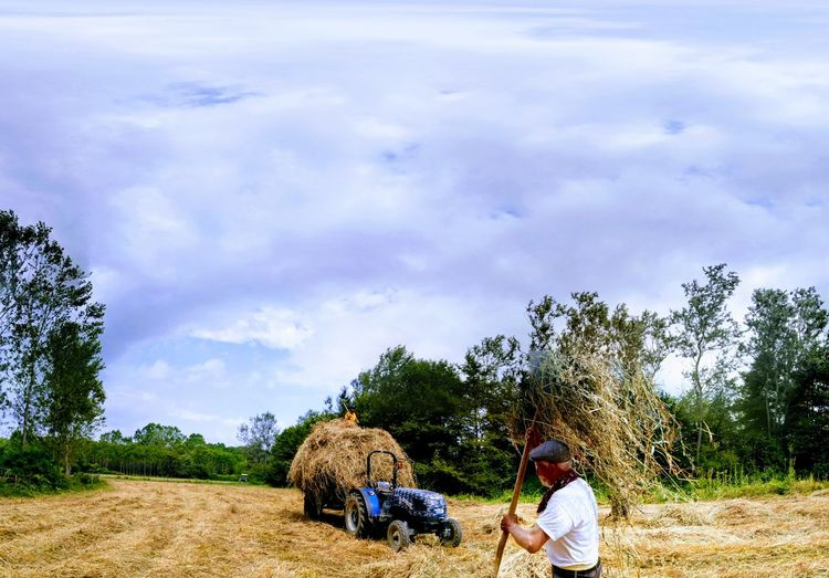 Agriculture Cloud - Sky Working Adult Sky Only Men Men People Farmer Rural Scene Tree Day Occupation Outdoors One Man Only Nature Adults Only One Person