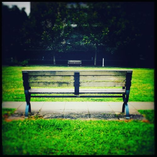 Just You and Me Bench Grass Park - Man Made Space Green Color Nature Day Outdoors Tree Park Bench Park