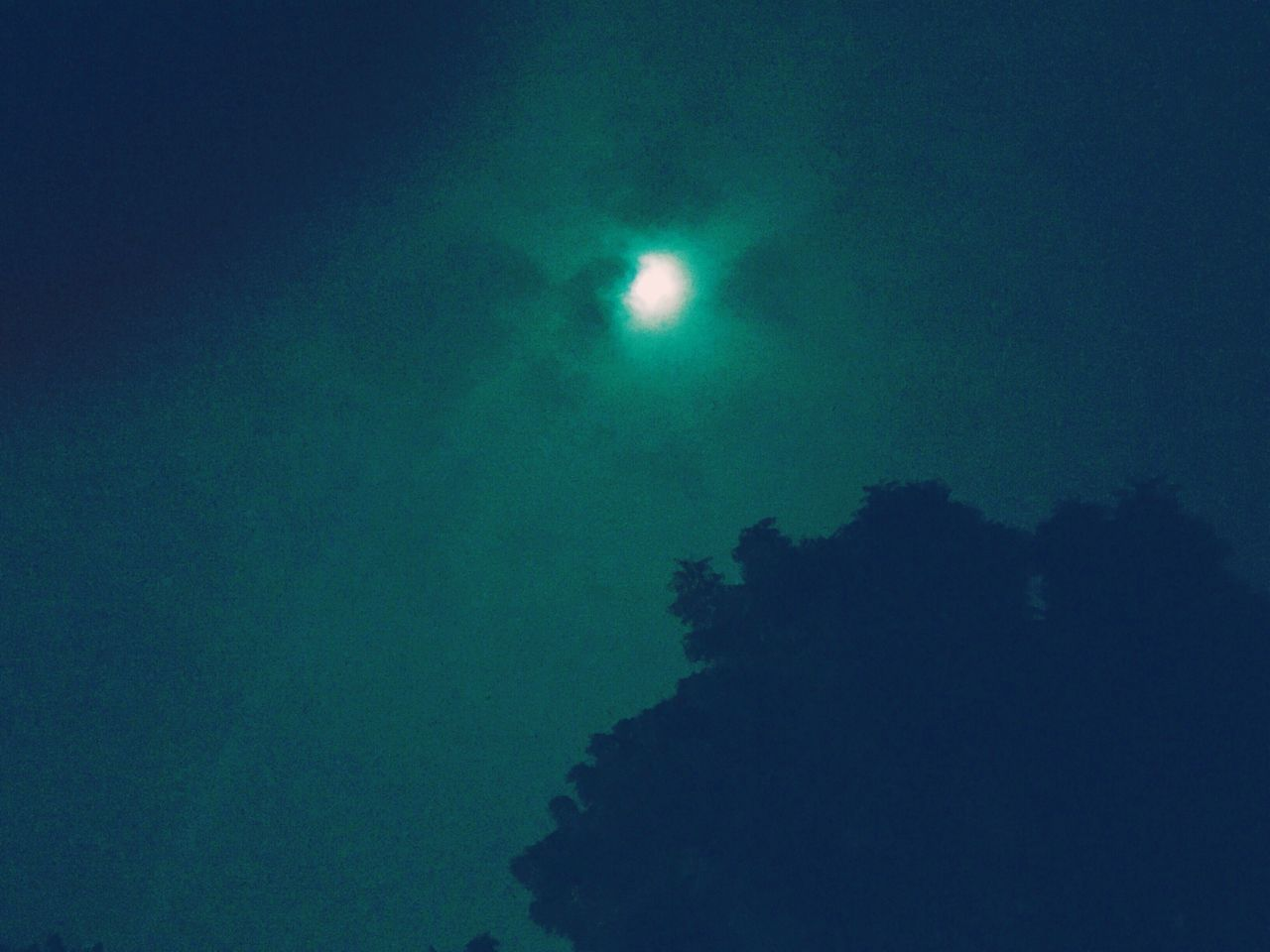 night, moon, illuminated, low angle view, nature, outdoors, no people, sky, half moon, beauty in nature, tree, astronomy
