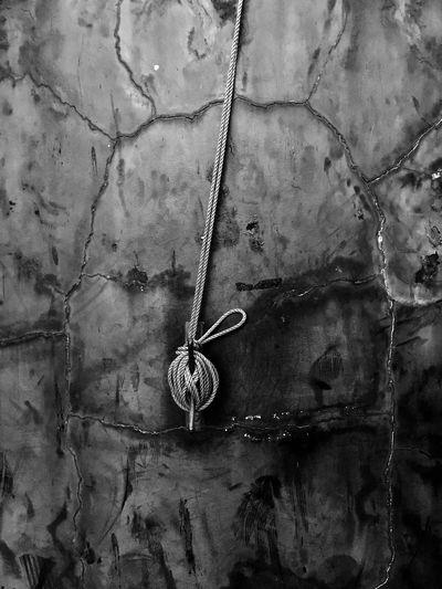 Tied Art Is Everywhere