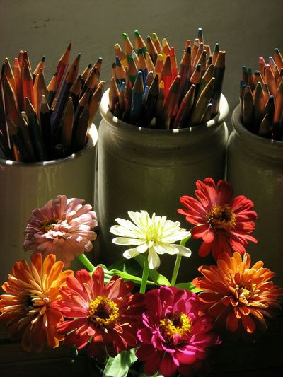 Zinnias & Coloured Pencils. Still Life Flowers & Pencils Coloured Pencils Zinnias Single Light Source Available Light Light & Dark Colourful Photo Colours Creative Photographer Creative Shots Colourful