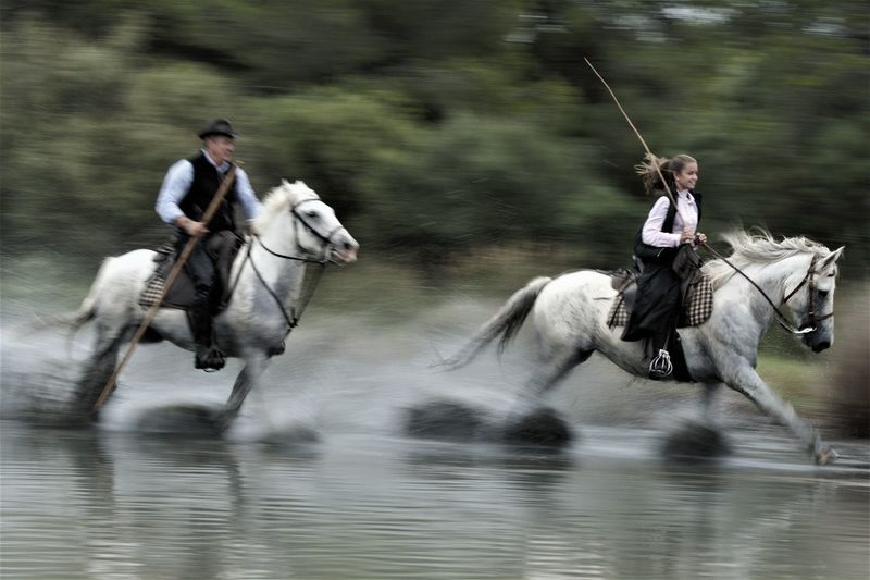Men riding horse in water