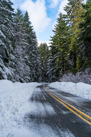 #beautifulbc #leadingtheway #supernaturalBC Beauty In Nature Cloud - Sky Cold Temperature Day Landscape Nature No People Outdoors Road Scenics Sky Snow Snowing Tree Winter