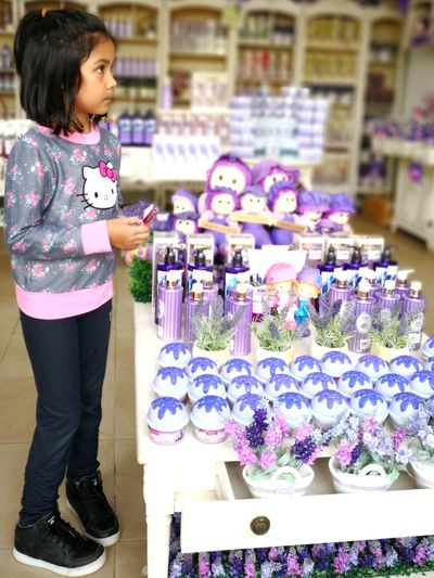 Cute Lavender Purple Purples Flower Supermarket Child Store Females Business Retail  Choice Florist Girls Blooming Market
