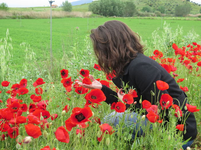Flower Growth Nature Poppy Field Agriculture Freshness People Real People Rural Scene Beauty In Nature Plant Outdoors One Person Close-up Fragility Red Seed Adults Only Day Enjoying Life Enjoying Nature Happy Beauty In Nature Popies