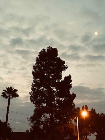 Sunrise before