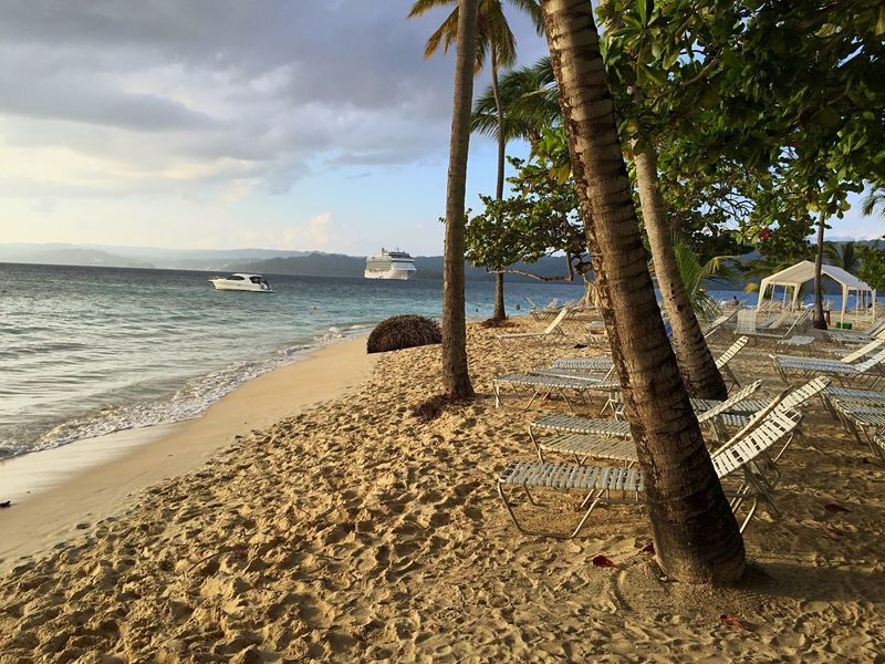 Island Bacardi Island Beach Sun Beds Palm Trees Sea Caribbean Ship Dominican Republic Empty Beach Nature Tropical Landscapes With WhiteWall