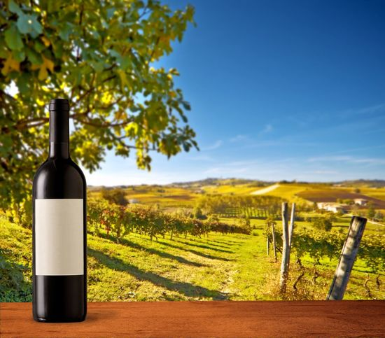 Wine bottle with blank label on landscape Nobody Hills Agricultural Land Piedmont Italy Italian Landscape Vineyards  Mock Up Mockup Copyspace Blank Label Bottle Landscape Land Plant Wine Wine Bottle Food And Drink Refreshment Container Environment Agriculture Sky Alcohol Field Drink Scenics - Nature Nature Vineyard Growth No People