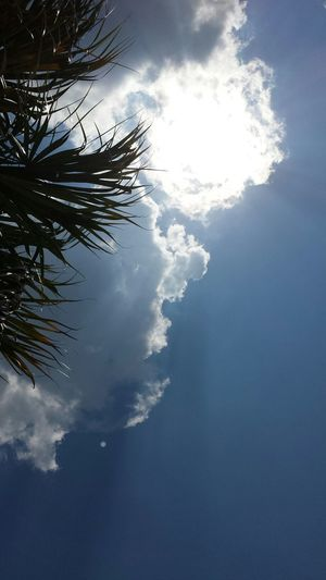 I live where you vacation Relaxing Poolday Florida Sky