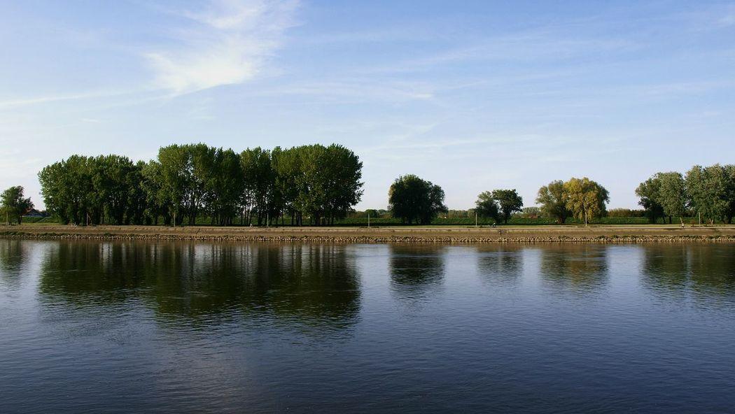 Osijek, Croatia Nature Reflection Spring River Landscape Contrast
