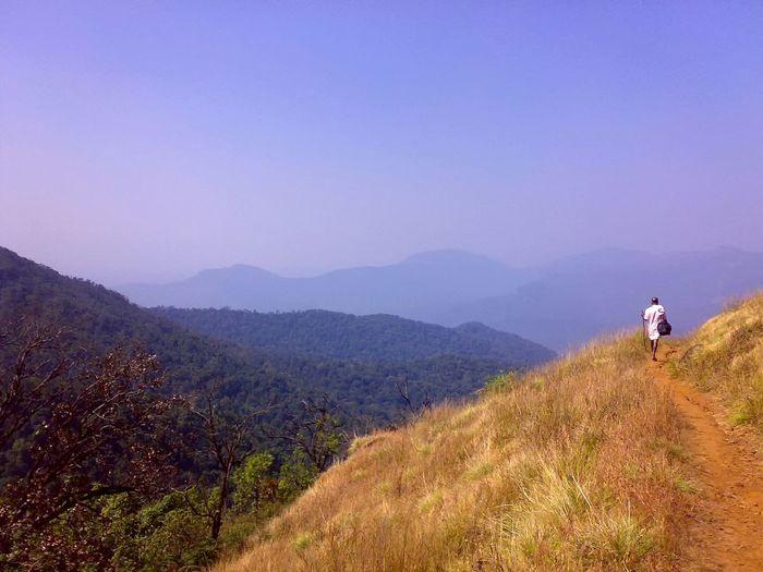 Journey. Travel Journey Walking Alone... In The Forest Solitude Trekking Way Forest Hills Alone Landscape