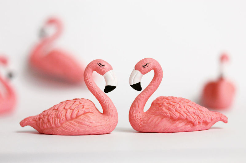 Close-up of swans table against white background