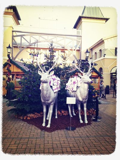 Winterwonderland Presents Reindeer