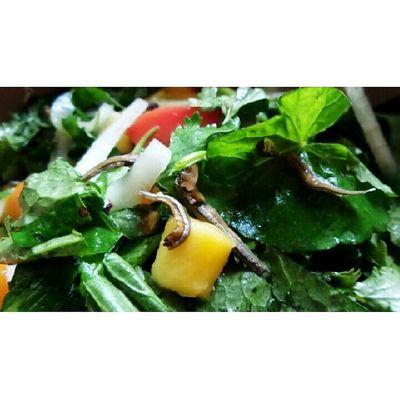 Salad pegagan @bumiherbal dicampur dgn teri jengki dan irisan mangga. @acmiid @williamwongso @santhiserad @fajar_arcana @billyoscar @jasminenoor Localdelicacy Localfood Traditionalfood DiscoverIndonesia culinary foodporn indonesia