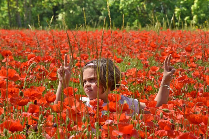 Flower Crop  Plant Field Growth Nature Agriculture Adult Red Poppy Rural Scene Outdoors People Adults Only Only Women One Person Day Headshot Human Face Women Child portrait EyeEm Best Shots - Flowers Ey The Portraitist - 2017 EyeEm Awards This Is My Skin